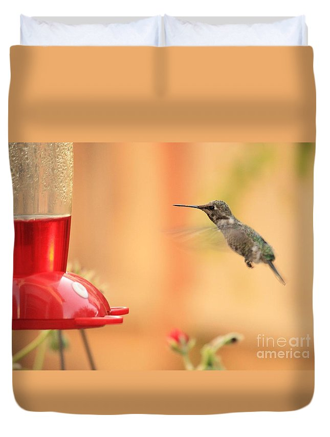 Hummingbird Duvet Cover featuring the photograph Hummingbird And Feeder by Carol Groenen