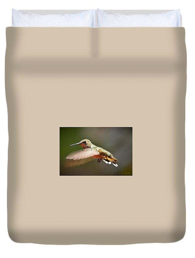 Hummingbird Duvet Cover featuring the photograph Hummingbird Facing Left by Albert Seger