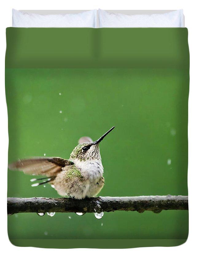 Hummingbird Duvet Cover featuring the photograph Hummingbird In The Rain by Christina Rollo