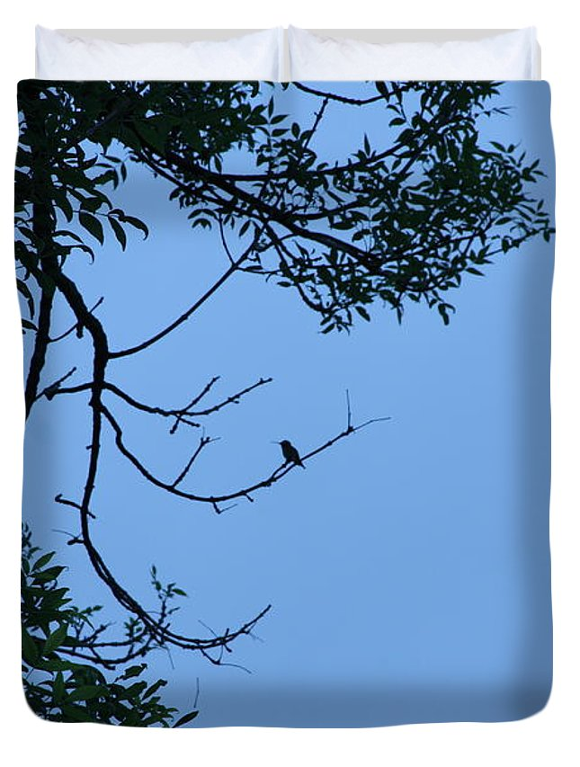 Hummingbird Duvet Cover featuring the photograph Hummingbird Silhouette by Michelle Miron-Rebbe
