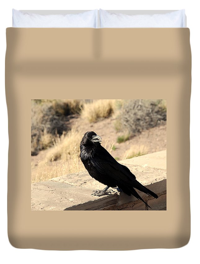 Crow Duvet Cover featuring the photograph Hungry Crow by Susanne Van Hulst
