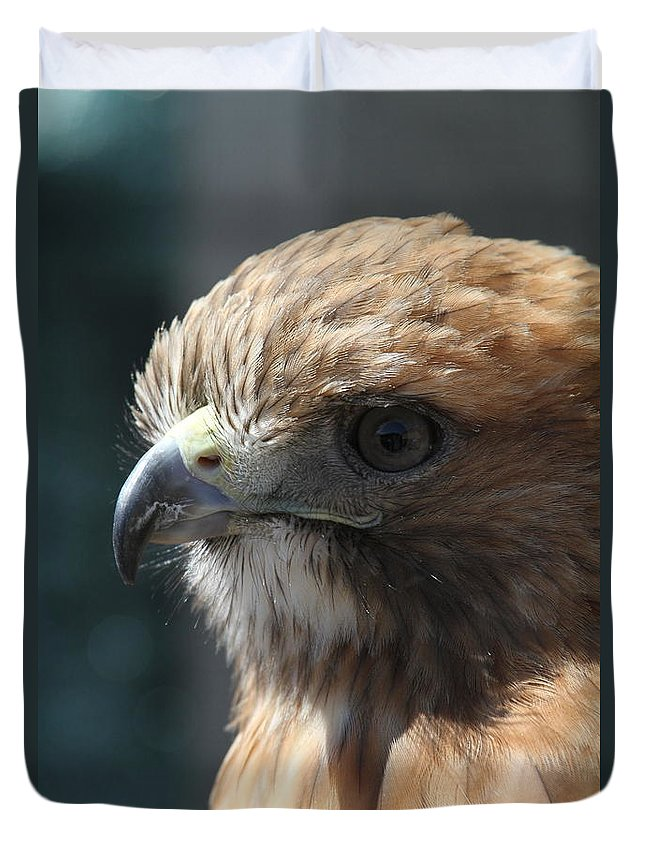 Hawk Duvet Cover featuring the photograph Hunter's Spirit by Laddie Halupa