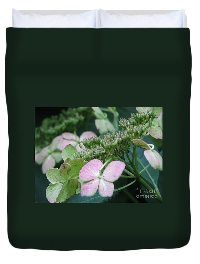 Hydrangea Duvet Cover featuring the photograph Hydrangea by Amanda Barcon