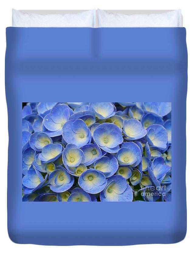 Flora Duvet Cover featuring the photograph Hydrangea Closeup by Gaspar Avila