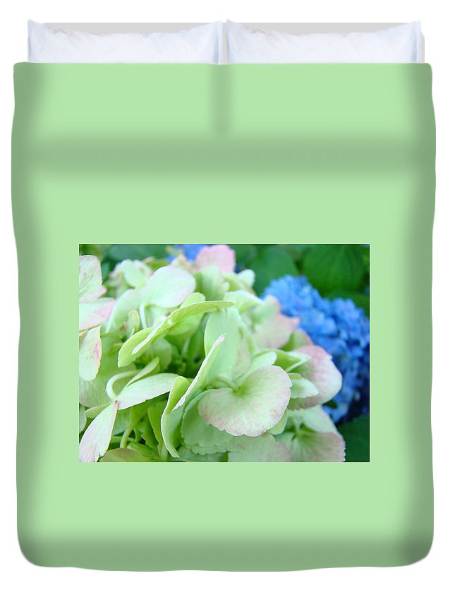 Hydrangea Duvet Cover featuring the photograph Hydrangea Flowers Art Prints Floral Gardens Gliclee Baslee Troutman by Baslee Troutman