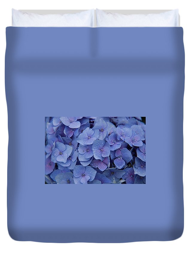 Flowers Duvet Cover featuring the photograph Hydrangea Flowers by Jerry McElroy