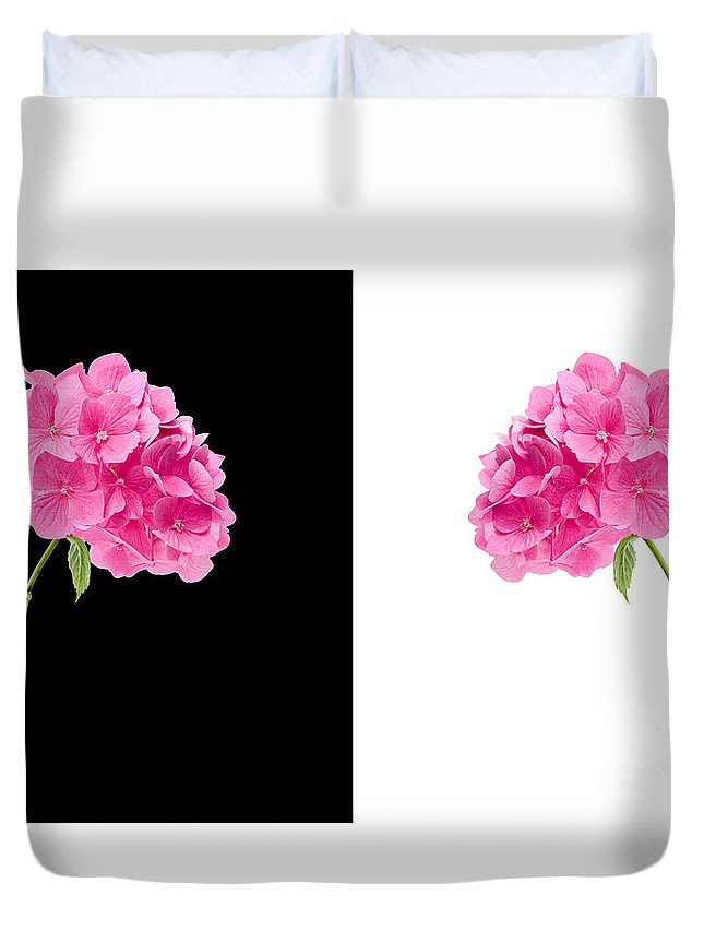 Background Duvet Cover featuring the photograph Hydrangeas On Black And White by Meirion Matthias