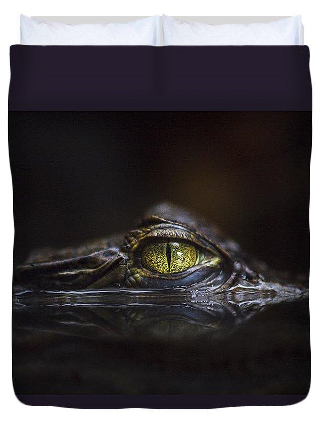 Alligator Duvet Covers