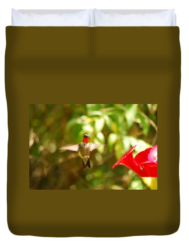 Hummingbird Duvet Cover featuring the photograph I Can Fly by Lori Tambakis