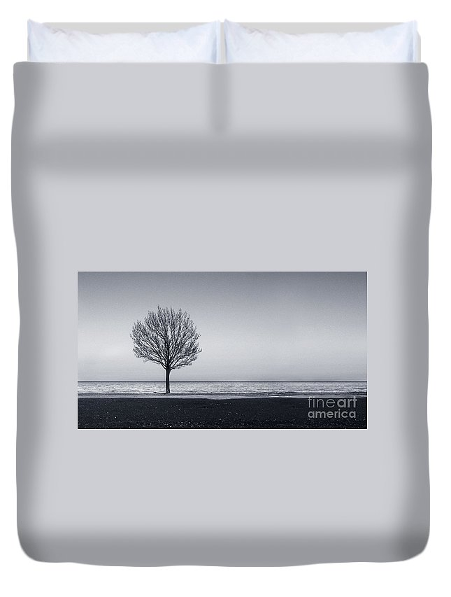 Tree Duvet Cover featuring the photograph I Didnt Hear You Leaving by Dana DiPasquale