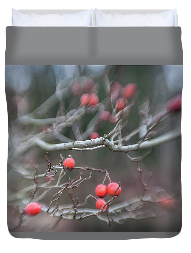 Red Berry Duvet Cover featuring the photograph I Dont Think I Was Supposed To Eat Those by Scott Campbell