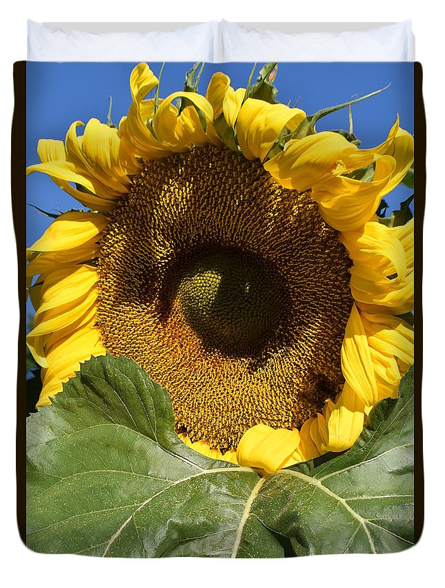 Sunflower Duvet Cover featuring the photograph I Got An Eye On You by Jimmy Chuck Smith