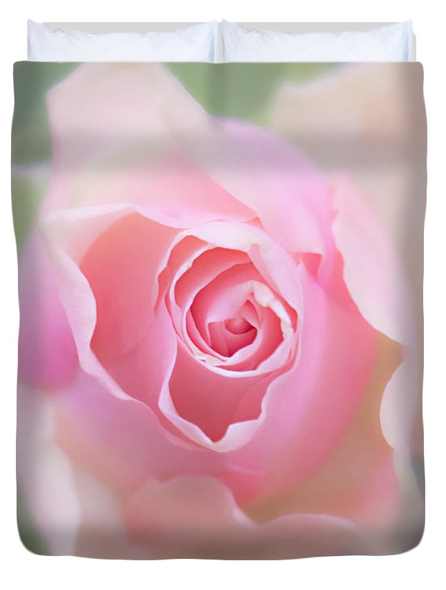 Pink Rose Duvet Cover featuring the photograph I Keep Waiting by Hal Halli