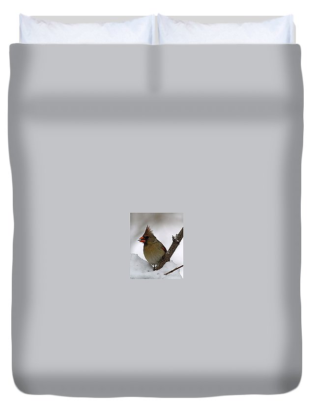 Bird Duvet Cover featuring the photograph I love seeds by Gaby Swanson