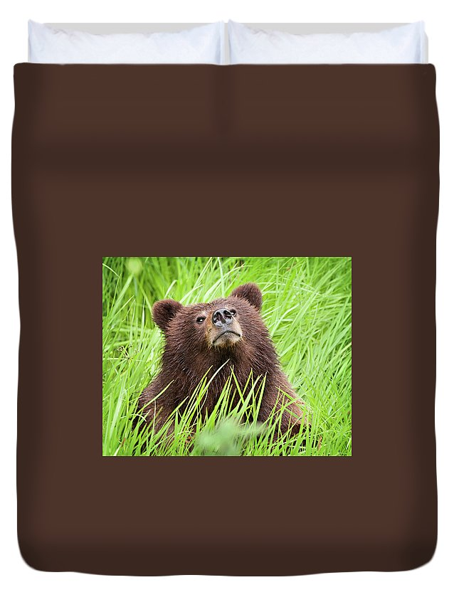 Alberta Duvet Cover featuring the photograph I Smell Something Good To Eat by Heidi Brand