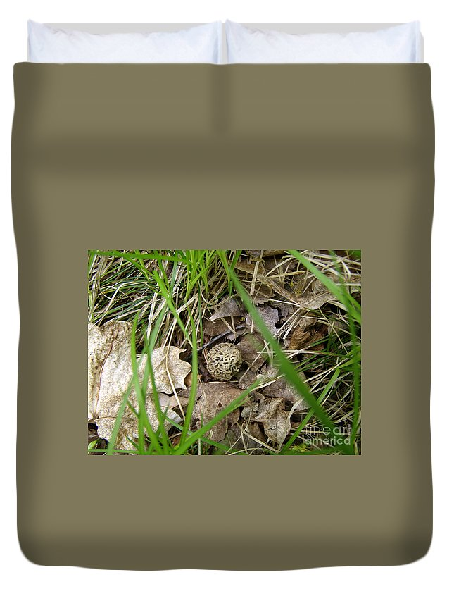 Morel Duvet Cover featuring the photograph I Spy - Morel Mushroom by Angie Rea