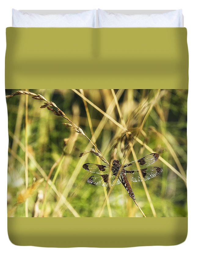 Common Whitetail Dragonfly Duvet Cover featuring the photograph I Spy A Dragonfly by Belinda Greb