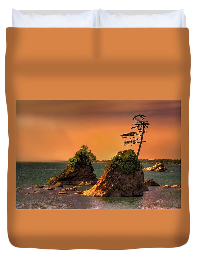 Landscape Duvet Cover featuring the photograph I Stand Corrected by John Absher