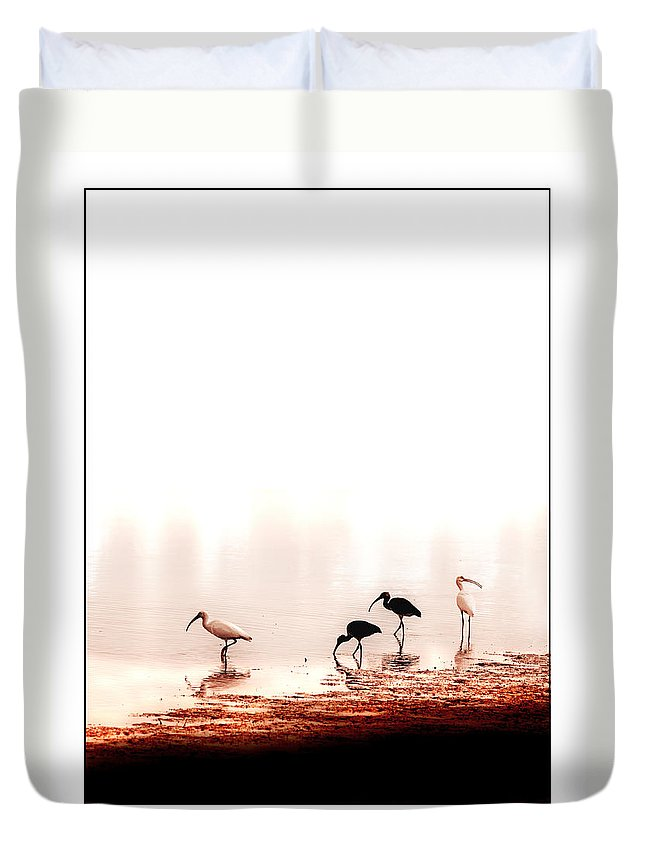 Ibis Duvet Cover featuring the photograph Ibis by Mal Bray