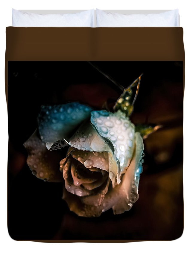 Rose Duvet Cover featuring the photograph Iceberg Rose by Rosemary Smith