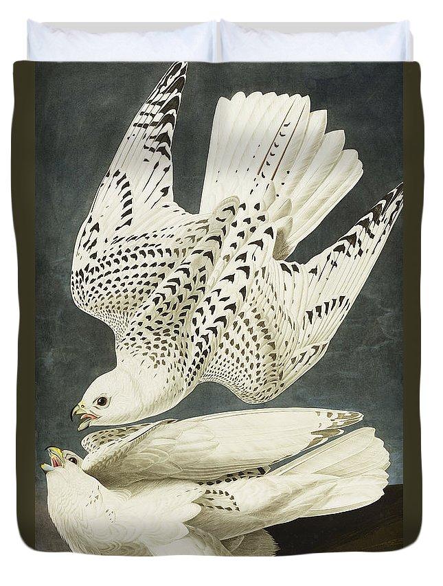 Falcon Duvet Covers