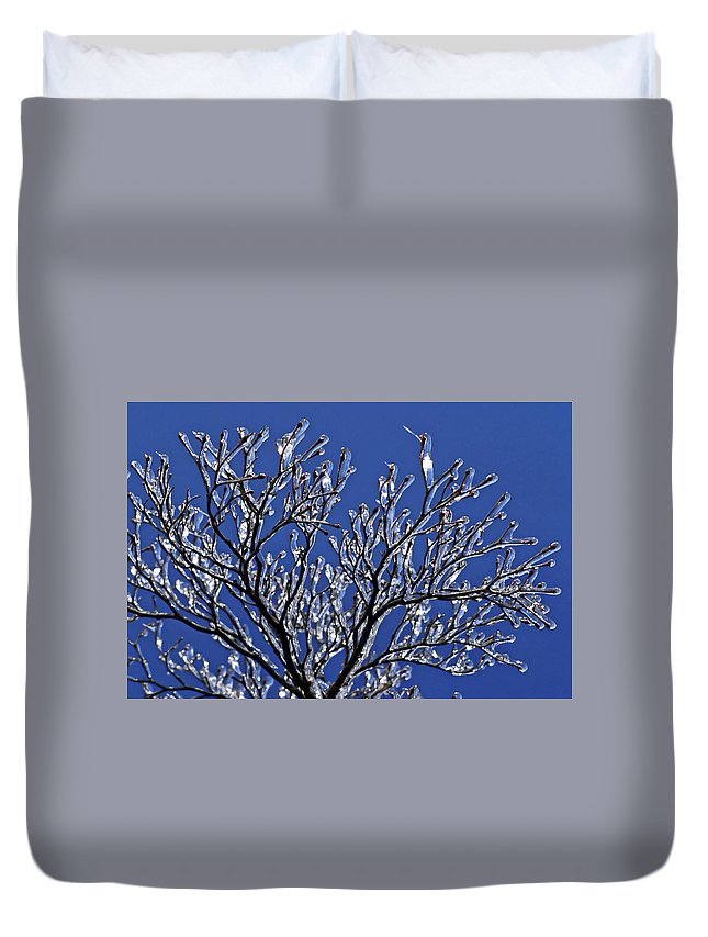 Bare Tree Branches Ice Encrusted Duvet Cover featuring the photograph Icey Sparkle by Sally Weigand