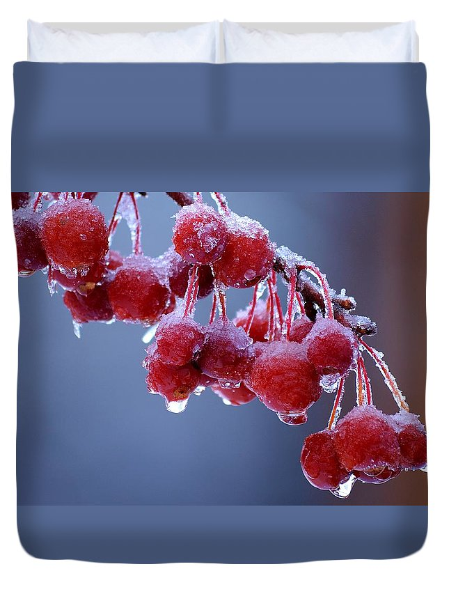 Winter Duvet Cover featuring the photograph Icy Berries by Lisa Kane