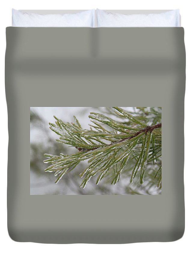 Icy Duvet Cover featuring the photograph Icy Fingers Of The Pine by Douglas Barnett