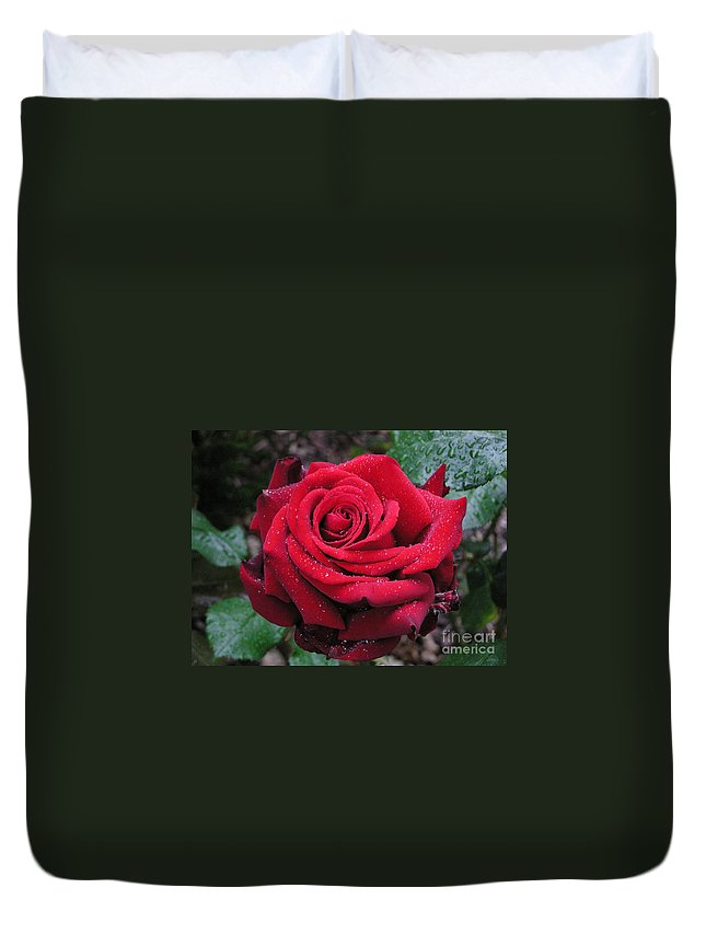 Rose Duvet Cover featuring the photograph Icy Rose by Louise Magno