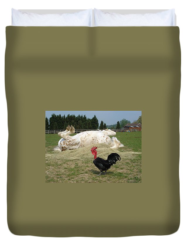 Pony Duvet Cover featuring the photograph If Looks Could Kill by Susan Baker