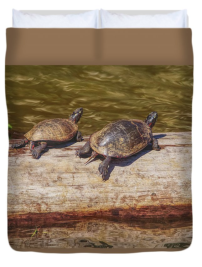 Turtles Duvet Cover featuring the photograph I'll Race You by Sandra Burm
