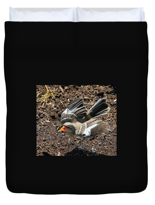 Nature Duvet Cover featuring the photograph I'm Talking To You by David Rosenthal