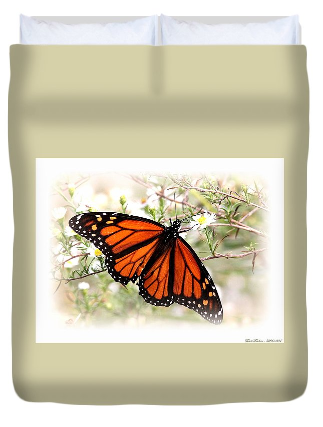 Butterfly Duvet Cover featuring the photograph Img_5290-004 - Butterfly by Travis Truelove
