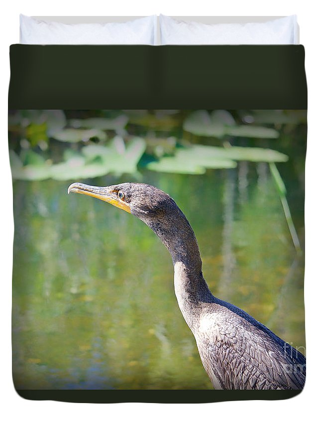 Birds Duvet Cover featuring the photograph Impressionable Cormorant by Judy Kay