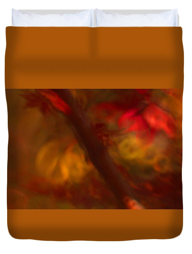 Leaves. Leaf Duvet Cover featuring the photograph Impressions Of Red And White Leaves by Gary Bartoloni