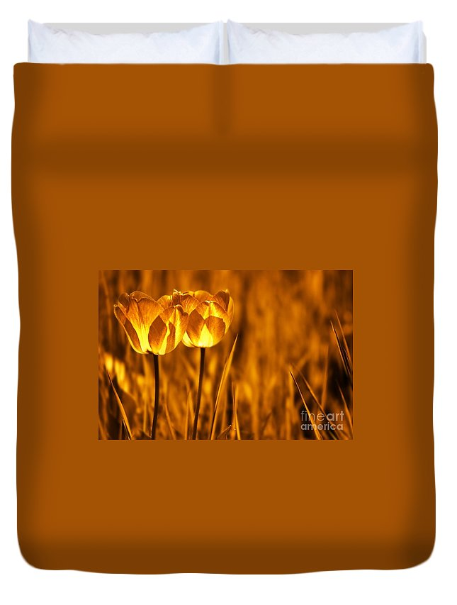 Tulips Duvet Cover featuring the photograph In A Perfect World by Jacky Gerritsen