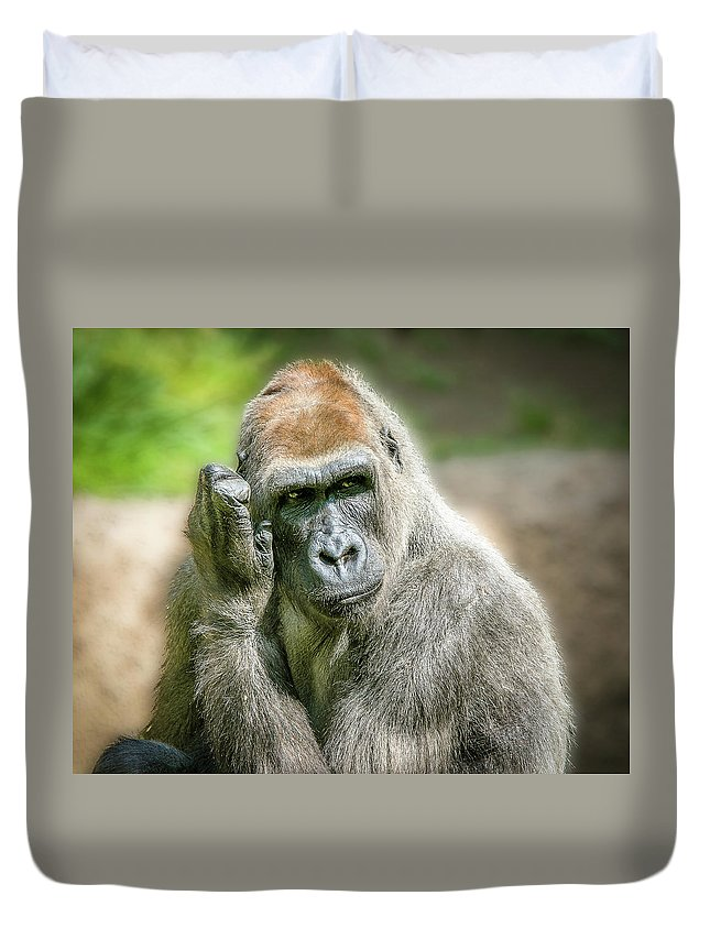 Gorilla Duvet Cover featuring the photograph In Deep Thought by Hugh Mobley