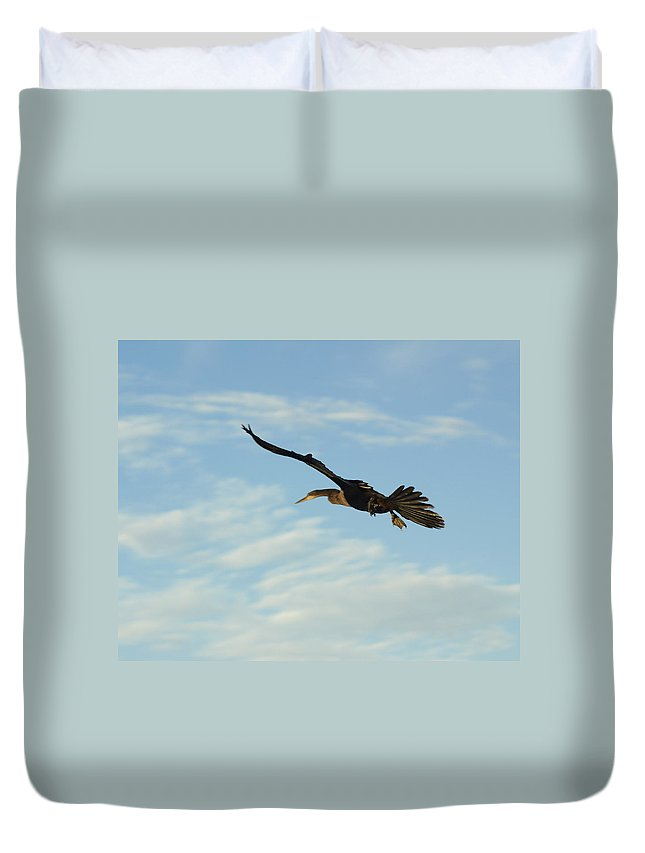 Birds Duvet Cover featuring the photograph In Flight by Marty Koch