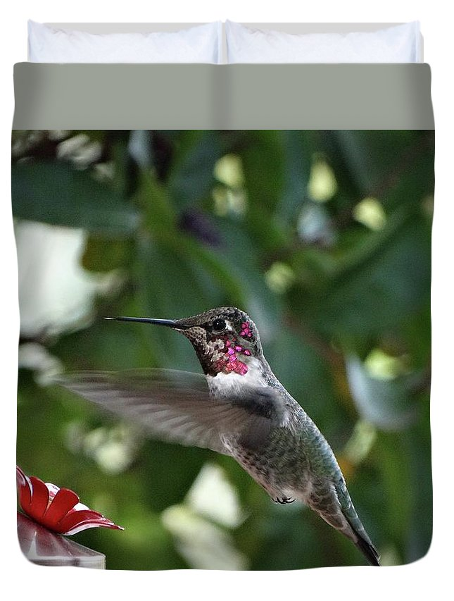 Aves Duvet Cover featuring the photograph In Flight Meal by Rhiannon Amaya