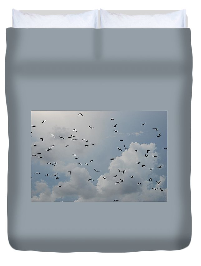 Birds Duvet Cover featuring the photograph In Flight by Rob Hans