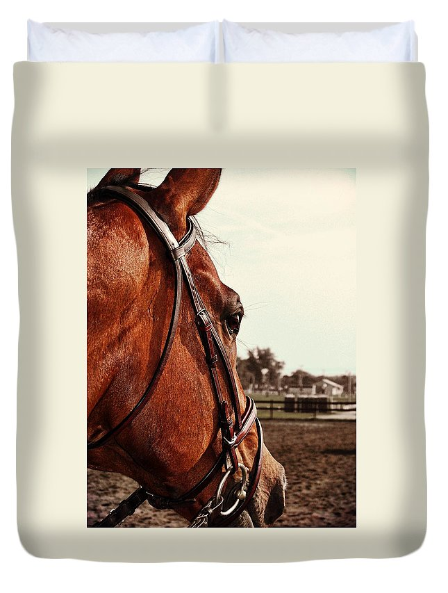 Horse Duvet Cover featuring the photograph In French Chevel by JAMART Photography