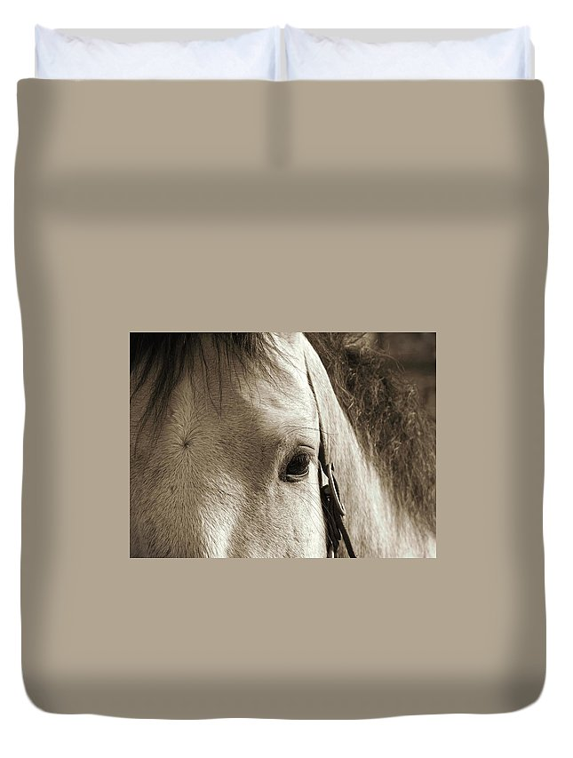 Horse Duvet Cover featuring the photograph In German Pferd by JAMART Photography