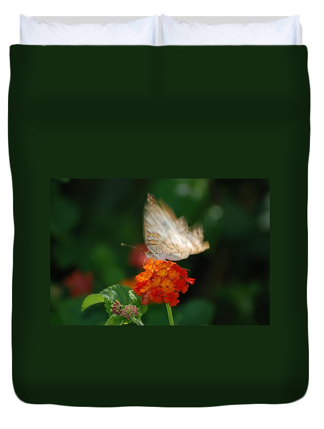Butterfly Duvet Cover featuring the photograph In Living Color by Rob Hans