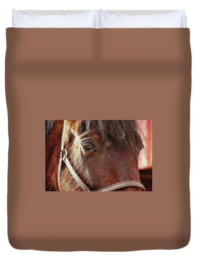 Horse Duvet Cover featuring the photograph In Russian Kon by JAMART Photography