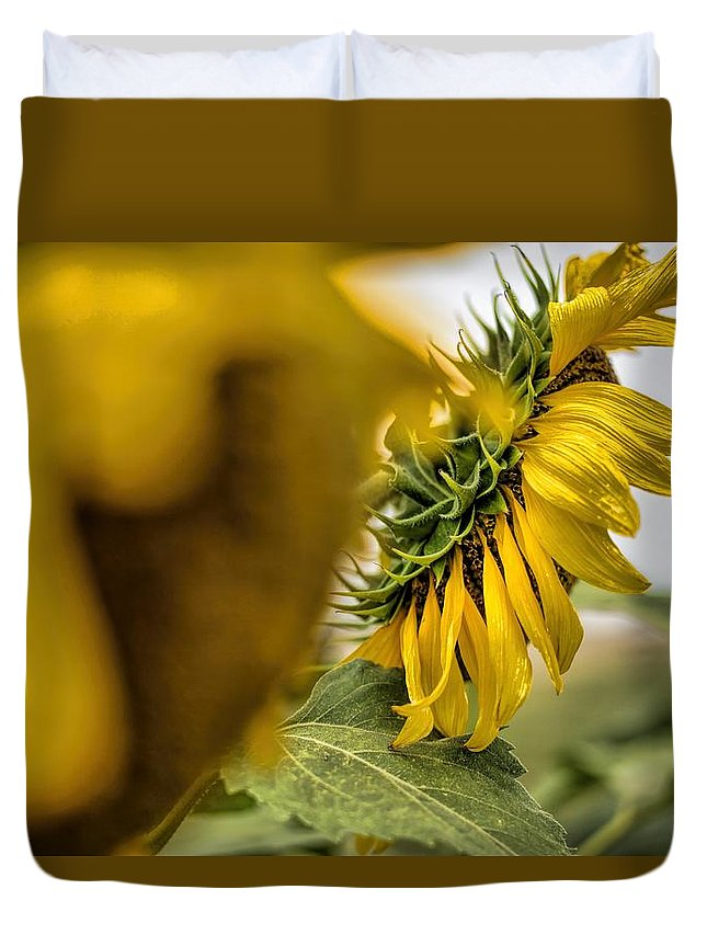 Flower Photography Duvet Cover featuring the photograph In The Background by Diana Mary Sharpton
