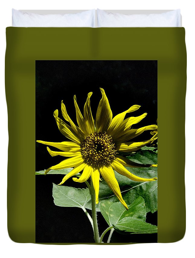 Pictures Of Flowers Duvet Cover featuring the photograph In The Dark by Skip Willits