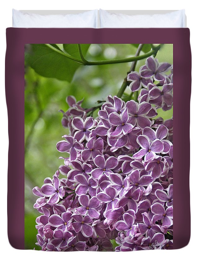 Purple Duvet Cover featuring the photograph In The Garden. Lilac by Ben and Raisa Gertsberg