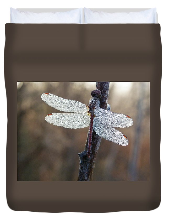 Insects Duvet Cover featuring the photograph In The Morning Light by Peggy King