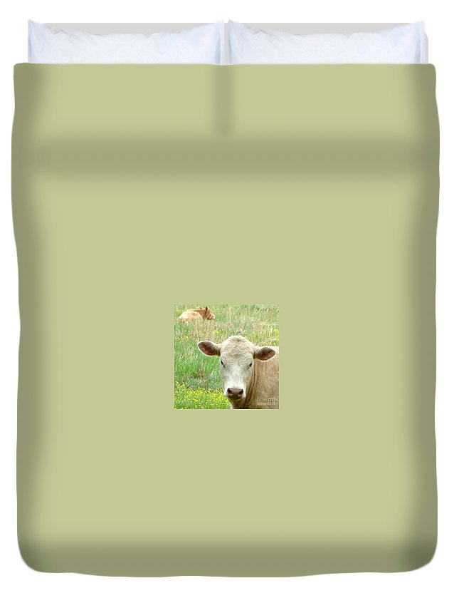 Kathy Bucari Duvet Cover featuring the photograph Posing In The Pasture by Kathy Bucari