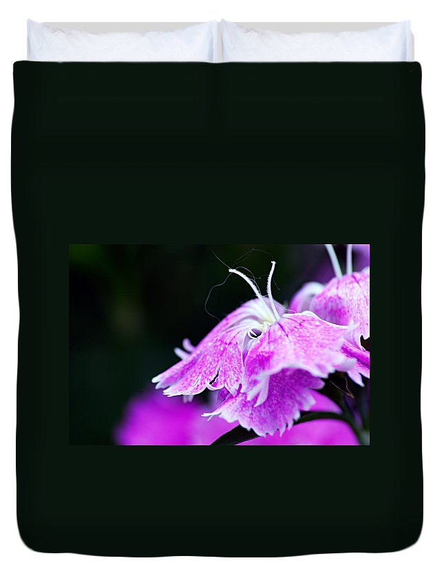 Photography Duvet Cover featuring the photograph In The Pink by Larry Ricker